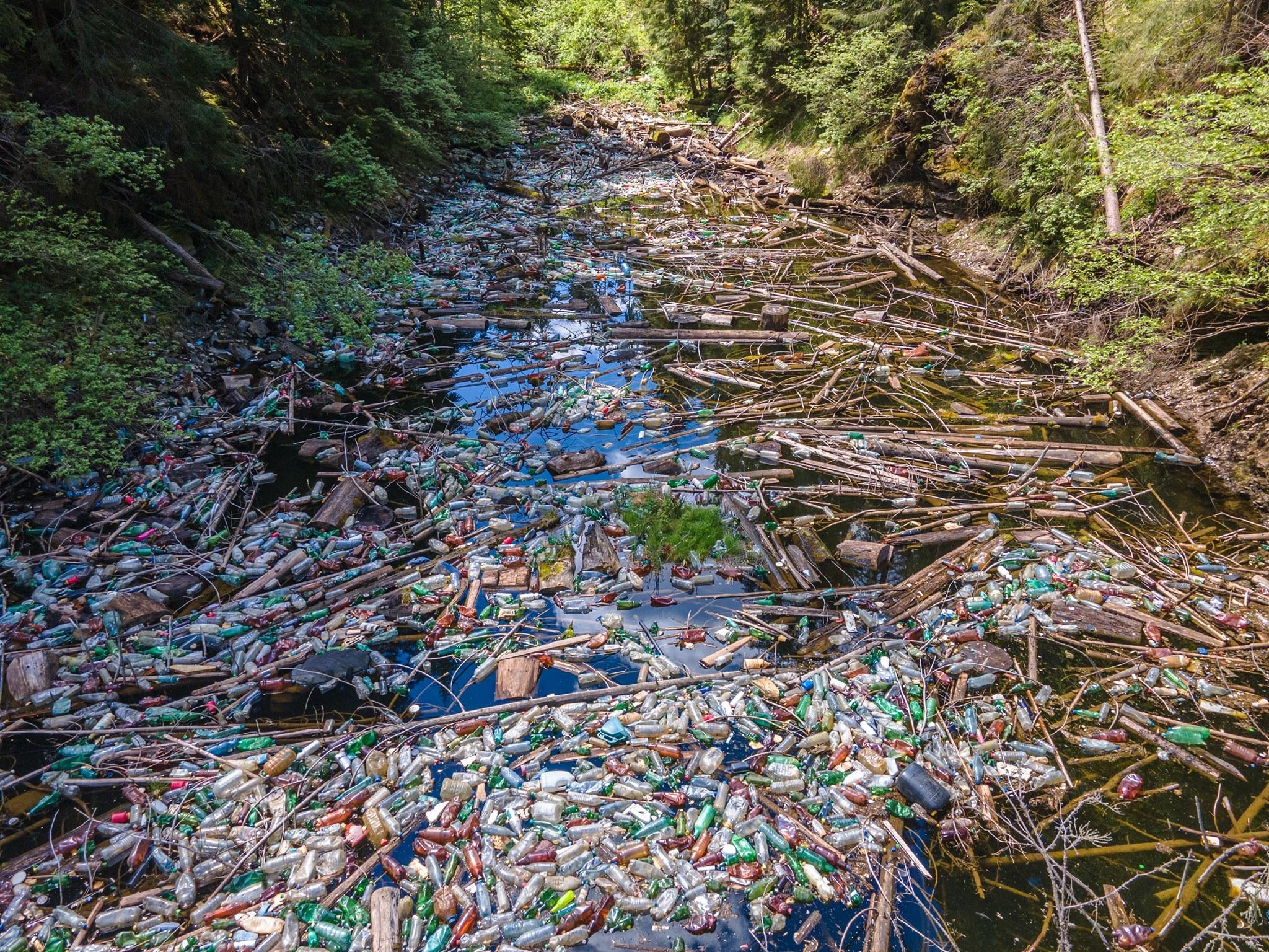 Unul dintre cele mai frumoase lacuri din Apuseni, acoperit de gunoaie: zeci de voluntari au strâns deșeuri