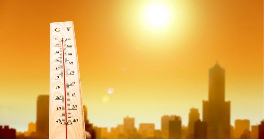 Berea te deshidratează vara? Sfaturile medicilor despre cum poți trece mai ușor de caniculă