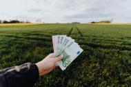 Top 5 idei de afaceri în agricultură pe care le poți începe la țară