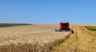 [FOTO] A renunțat la o posibilă carieră în turism pentru o afacere cu grâu în care a investit 500.000 euro