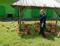 In vizita la Agricola Bacau,...