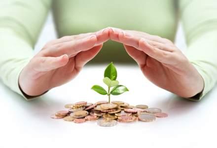 Oamenii bogati nu tin banii la saltea: strategii si solutii pentru a-ti proteja capitalul