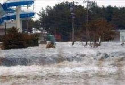 Japonia, zguduita de un cutremur de 8,9 grade [VIDEO UPDATE]
