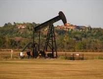 Barilul de petrol a crescut...