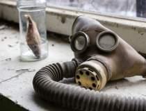 La Cernobil ar putea fi...