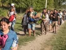 Arad: Douazeci de migranti...