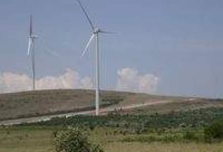 Enel incepe constructia unui parc eolian de 70 MW in Tulcea