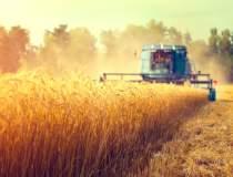Exporturile de cereale, in...