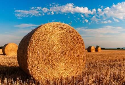 Proiect de ordonanta de urgenta: Fermierii vor putea accesa microcredite de pana la 50.000 de euro
