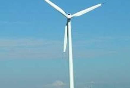 Romenergo vizeaza investitii de peste 80 mil. euro in producerea de energie