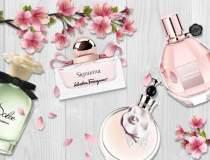 Sole Luxury Boutique,...