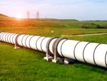 Importurile de gaze naturale...