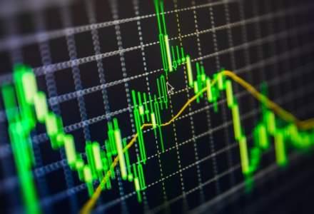 Cursul BNR: Euro scade la 4,4920 lei; dolarul coboara la 4,2204 lei