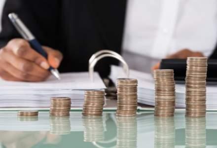 Deputatii au aprobat cererea catre Curtea de Conturi pentru efectuarea unei anchete privind rectificarile din 2016