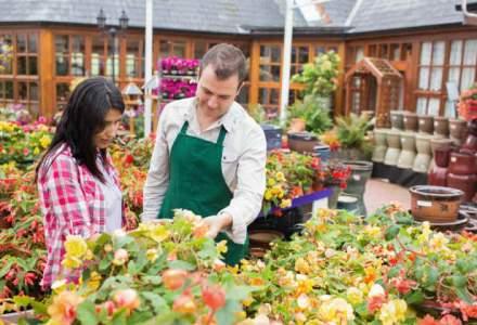 5 sfaturi pretioase pentru ca sera ta cu flori sa fie un succes