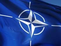 NATO isi concentreaza fortele...