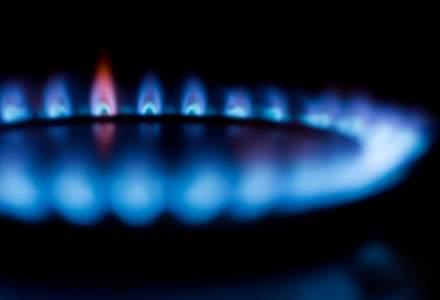 Ministrul Energiei spune ca gazele pentru populatie s-ar putea scumpi cu maximum 8,5% in acest an