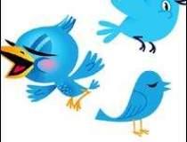 Twitter a atins 100 de...
