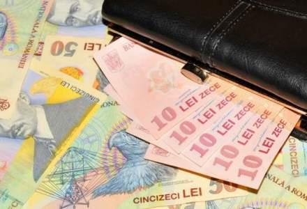 Creditele acordate populatiei in lei, crestere anuala de 24%