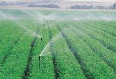 Romania are cele mai multe exploatatii agricole din UE