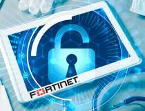 (P) Cine protejeaza datele...