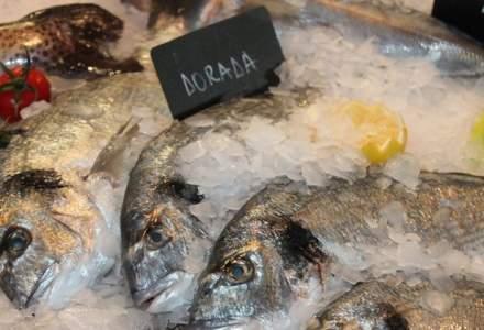 Romfood Trading vrea vanzari de 2,6 mil. euro din peste si fructe de mare in HoReCa