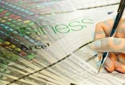 AFACERI VEDETA: Cele mai cautate industrii pentru francize