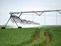 Agricover IFN atinge 1 mld....