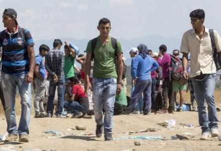 Imigranti sirieni si calauze bulgare, depistati de politistii de frontiera constanteni
