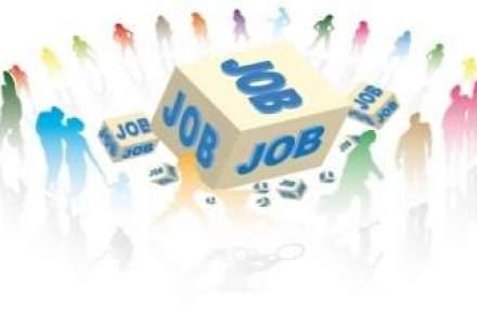 Top job-uri la care mergi din placere