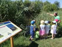 (P) Parcul Natural Vacaresti...