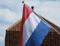 Olanda, presata sa accepte...