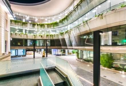Fitbit lanseaza in Bucuresti cel mai mare birou de cercetare si dezvoltare din Europa: ce angajari urmeaza