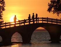 Timisoara va construi un pod...