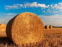 Agricover, investitie masiva...