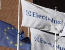 Ce spune Electrolux despre...