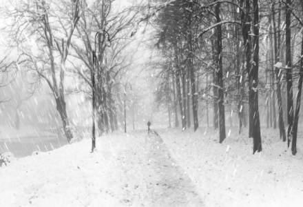 Cod galben de vant puternic si ninsoare in zonele de munte din sase judete