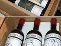 Vinuri in putine sticle