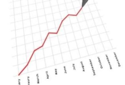 BrandTailors si-a marit cifra de afaceri cu 20% anul trecut
