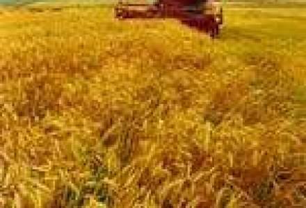 Sectoarele agricole care vor aduce profit dupa integrarea in UE