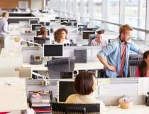Numarul joburilor in IT, in...
