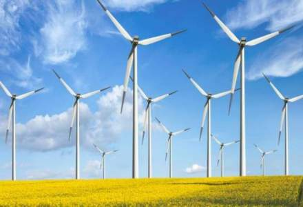 Productia de energie eoliana se afla pe primul loc in topul resurselor care genereaza electricitate la nivel national