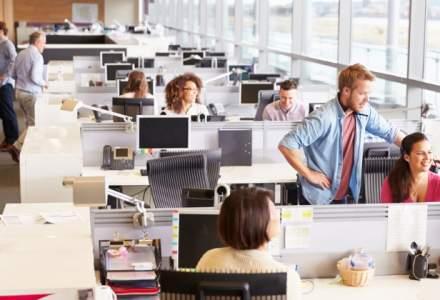 Care au fost cei mai buni angajatori in 2017