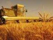 Agricultura ecologica...