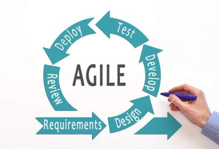 Management in Scaled Agile Software Development