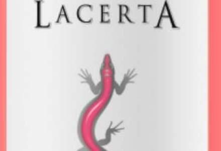 Cum vrea producatorul de vin LacertA sa atinga milionul de euro in acest an