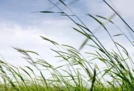Dezvoltare rurala de 10 MLD. euro: Incotro s-au indreptat cei mai multi bani europeni