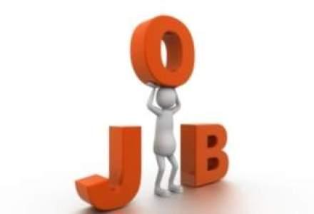 Companiile cauta angajati. Vezi pentru ce joburi