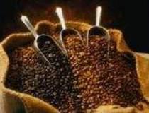 Cotatiile cafelei dau in clocot