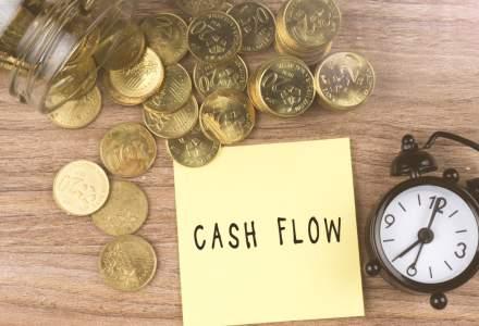 Studiu: 17% dintre companii se tem de faliment si sufera cel mai mult de pierderi de profit, probleme cu cash flow si reduceri ale investitiilor